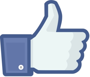 facebook_like_thumb medium