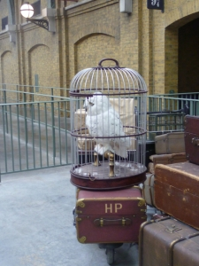 Harry Potter Luggage
