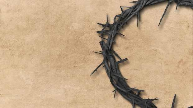 Parnell crown of thorns